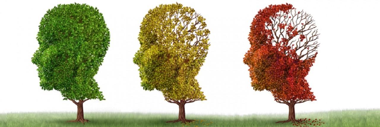 Dementia_trees_-croppedjpg